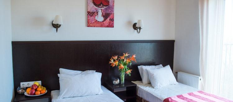 Двухместный Комфорт с раздельными кроватями (1 категория)